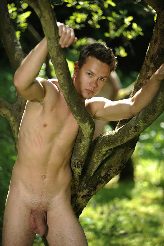 descendre-de-l-arbre