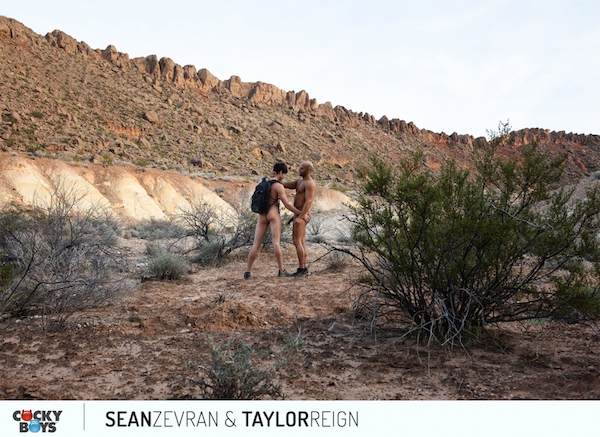 2 amis naturistes gays nus jouent en pleine nature